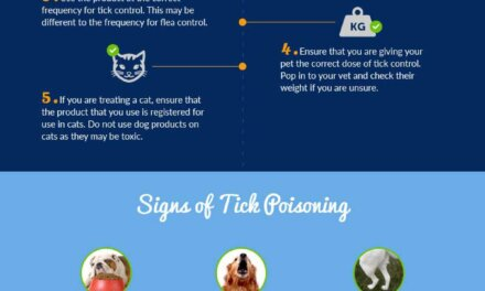 Tick Paralysis in Dogs and Cats