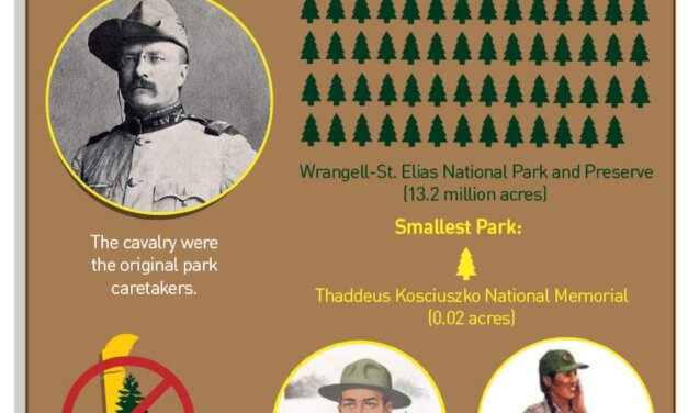 The National Park Service Turns 100!