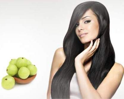 The Benefits of The Incredible Food for Your Hair- Amla