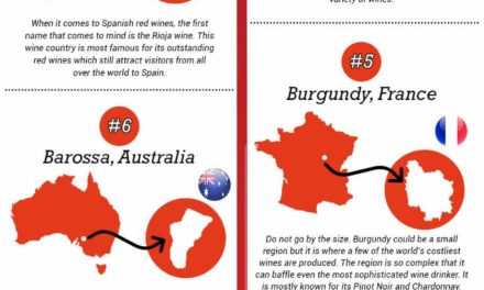 10 Best Wine Tour Destinations In The World You Must Visit This Year (Gifographic)