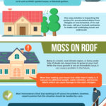 Common-Roofing-Problems-and-How-to-Solve-Them