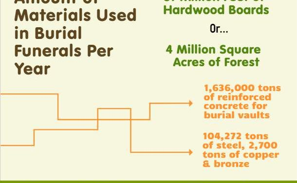 Environmental Impact of Burial Funerals