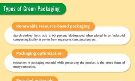 All You Need To know About Sustainable Green Packaging