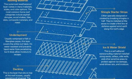 Understanding the Anatomy of a Roof & Its Many Layers