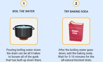 A Complete Guide On How To Unblock A Toilet